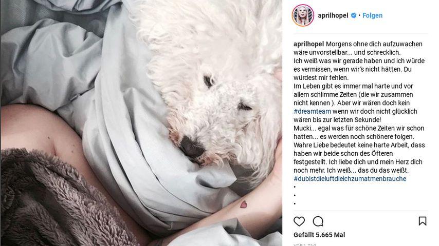 Screenshot von Laura Maacks Instagram-Beitrag