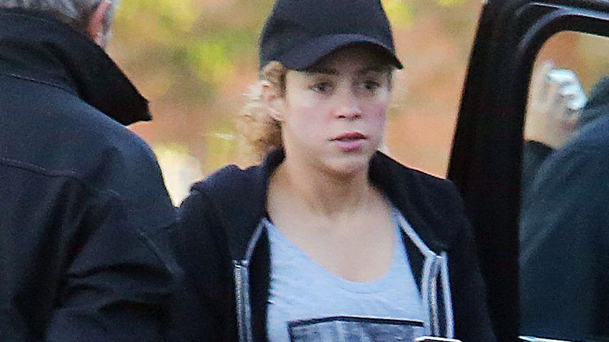 Lässig! Hochschwangere Shakira fährt Schlitten