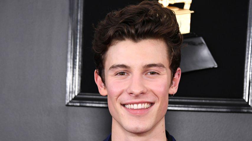 Shawn Mendes im Februar 2019 in Los Angeles