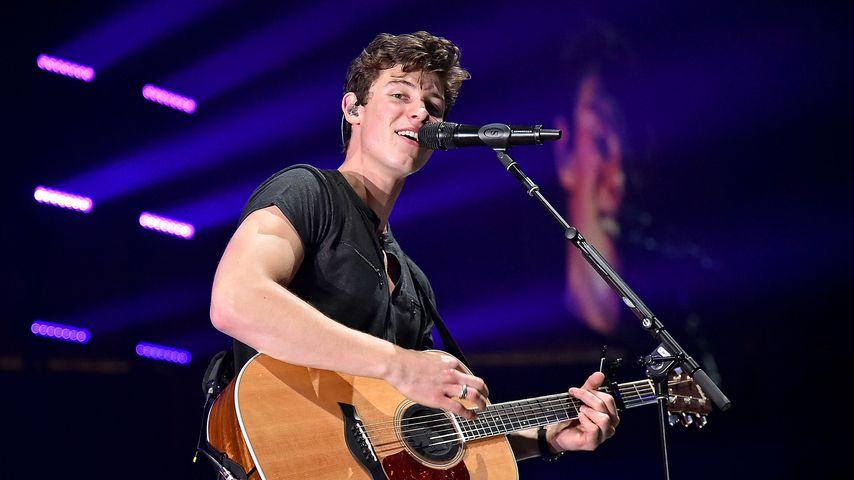 Shawn Mendes bei einem Konzert 2017