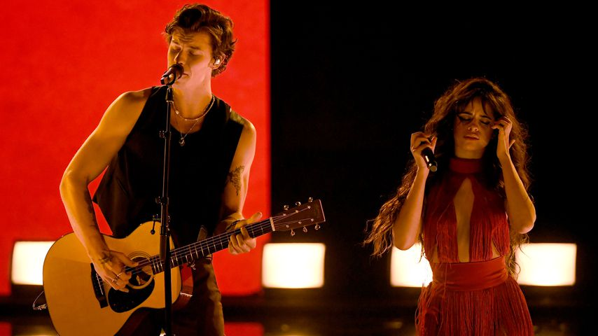 Shawn Mendes und Camila Cabello im November 2019
