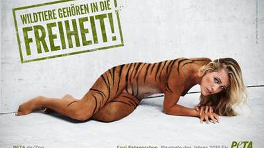Nacktes Engagement: Bachelor-Zweite Sissi fährt Krallen aus!