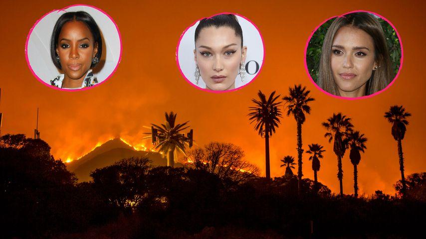 Hollywood-Stars in Angst: In L.A. wütet ein Feuer-Inferno!