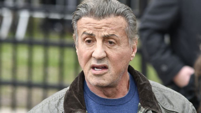 """Sylvester Stallone hat keine Anteile am """"Rocky""""-Franchise"""