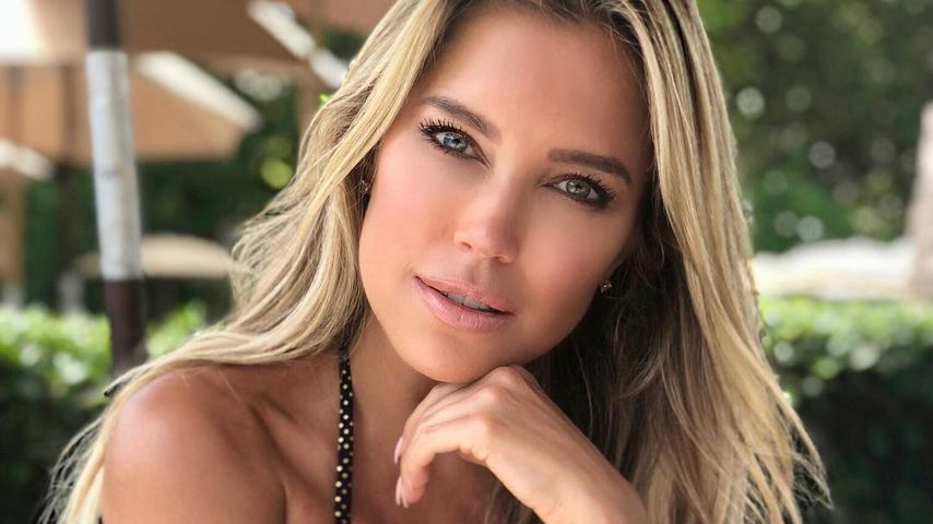 Sylvie Meis, TV-Star