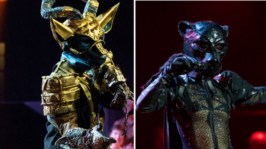 """Wegen Umarmung: Kennen sich diese """"The Masked Singer""""-VIPs?"""