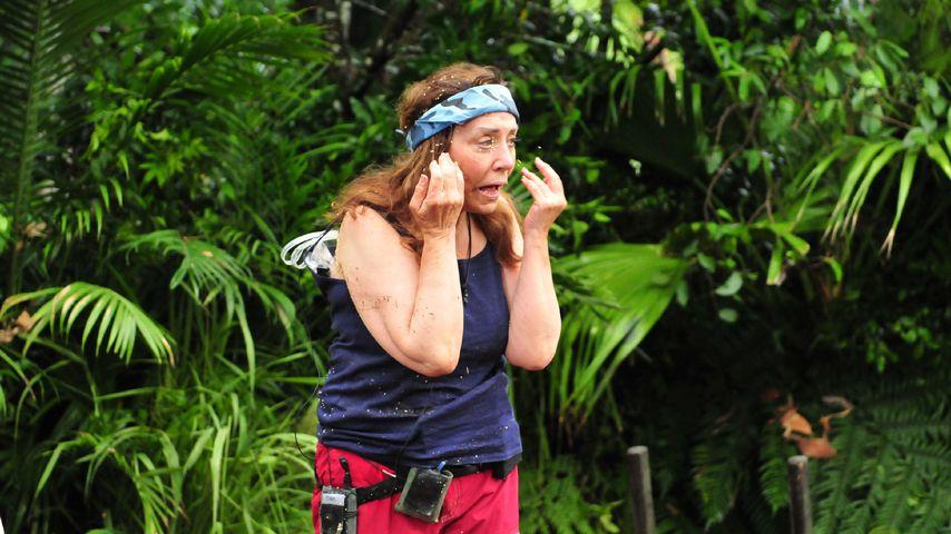 Tina York, Dschungelcamp-Finalistin