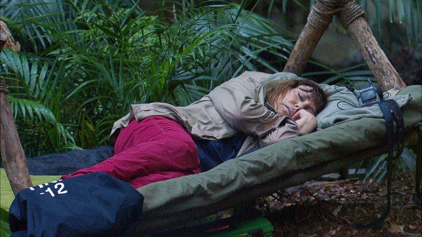Tina York im Dschungelcamp, Tag 12