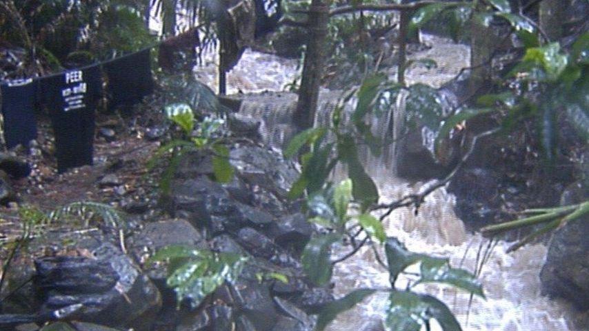 Überschwemmung im Dschungelcamp 2011