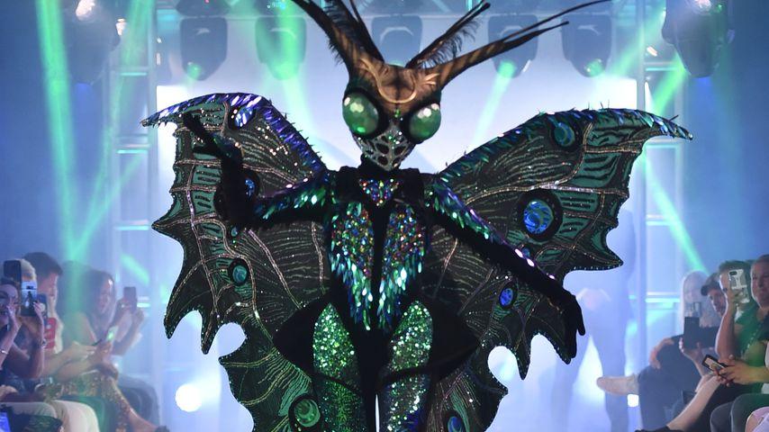 "Echte Superstars enttarnt: Top-Cast bei US-""Masked Singer""!"