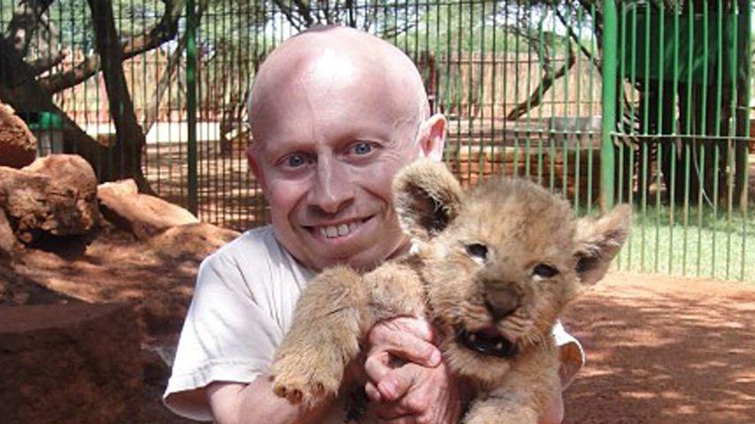 """Witzig! """"Mini-Me"""" ist so groß wie ein Löwenbaby!"""