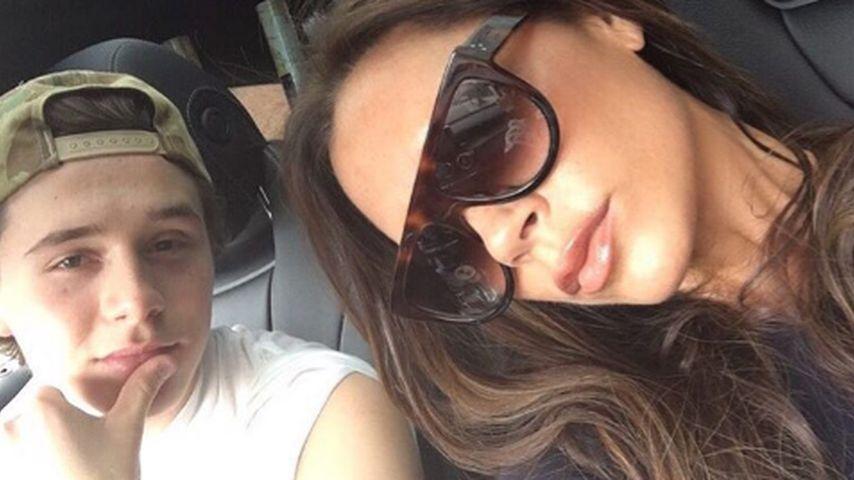 Brooklyns Fahrstunde: Die Beckhams lassen sich kutschieren!