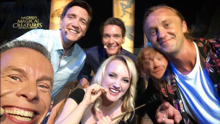 """Tom, Rupert & Co.: Kleine """"Harry Potter""""-Reunion in Orlando!"""