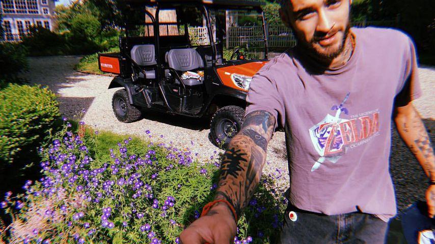 Nach Kuschel-Pic: Zayn & Gigi haben romantisches Garten-Date