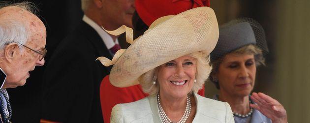 "Camilla Parker Bowles beim ""Hosenbandorden"" auf Schloss Windsor 2016"