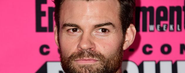 "Daniel Gillies spielt Elijah Mikaelson bei ""The Originals"""