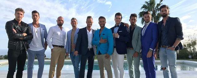 Die Bachelorette-Boys 2017
