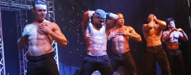 Promis in Ekstase: So heiß ist die Strip-Show der SixxPaxx