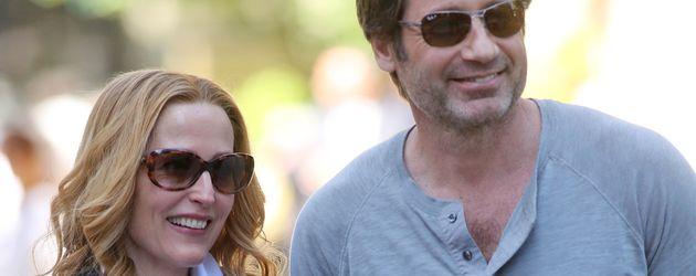 Gillian Anderson und David Duchovny
